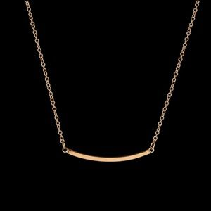 Curved Bar Shape Necklace